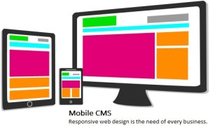 Mobile CMS Development
